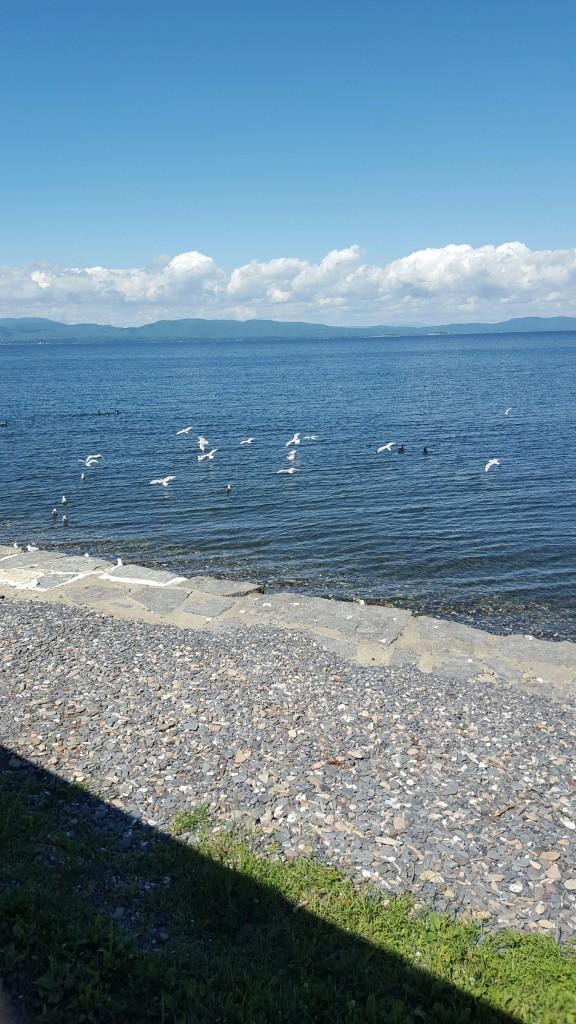 Lake Champlain from Shelburne Farms